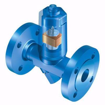 Obrázok pre výrobcu Condensate discharge temperature limiter
